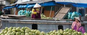 Vietnam,  les trésors du delta du Mékong