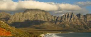 Symphonie de couleurs & saveurs d'Afrique du Sud